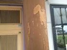 柱にペンキ塗っちゃってます(泣)